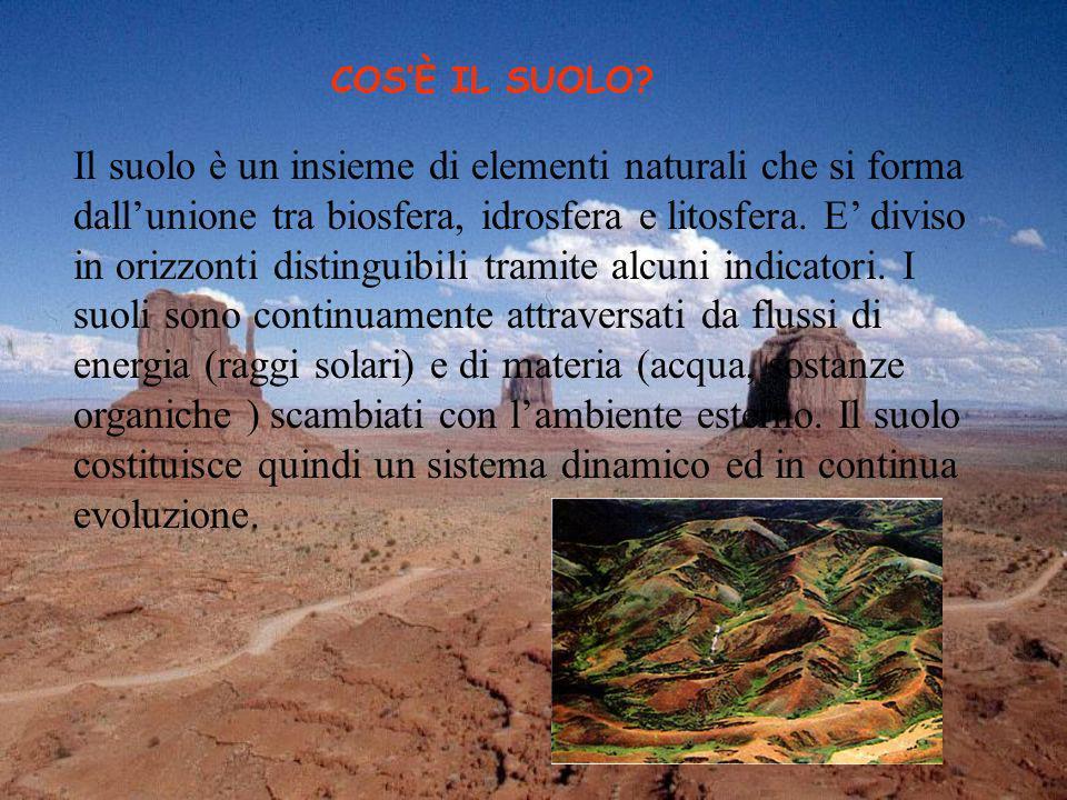 COSÈ IL SUOLO? Il suolo è un insieme di elementi naturali che si forma dallunione tra biosfera, idrosfera e litosfera. E diviso in orizzonti distingui