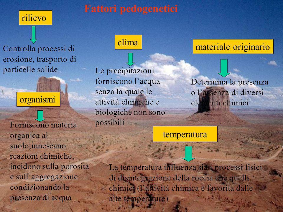 Le precipitazioni forniscono lacqua senza la quale le attività chimiche e biologiche non sono possibili La temperatura influenza sia i processi fisici