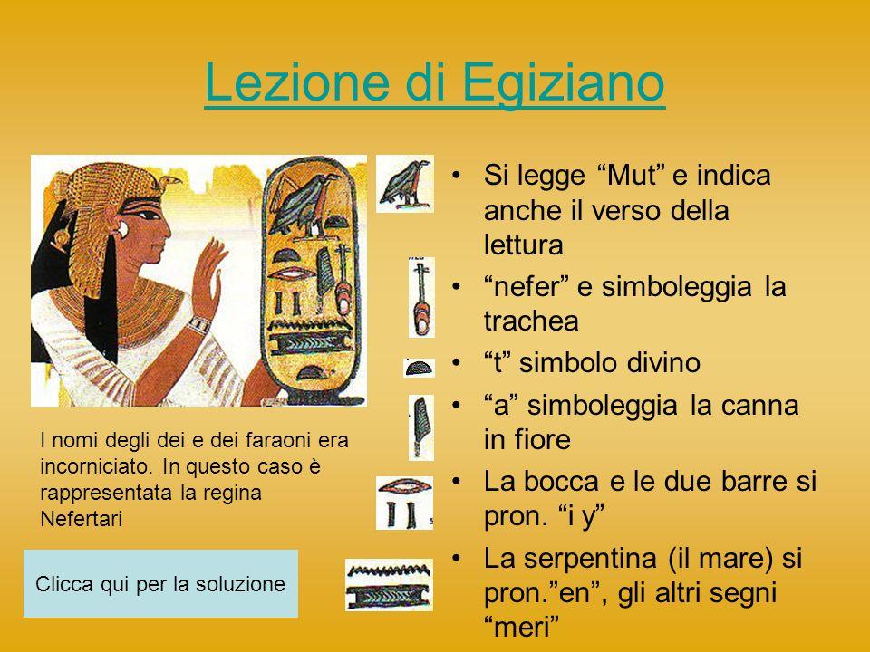Lezione di Egiziano Si legge Mut e indica anche il verso della lettura nefer e simboleggia la trachea t simbolo divino a simboleggia la canna in fiore