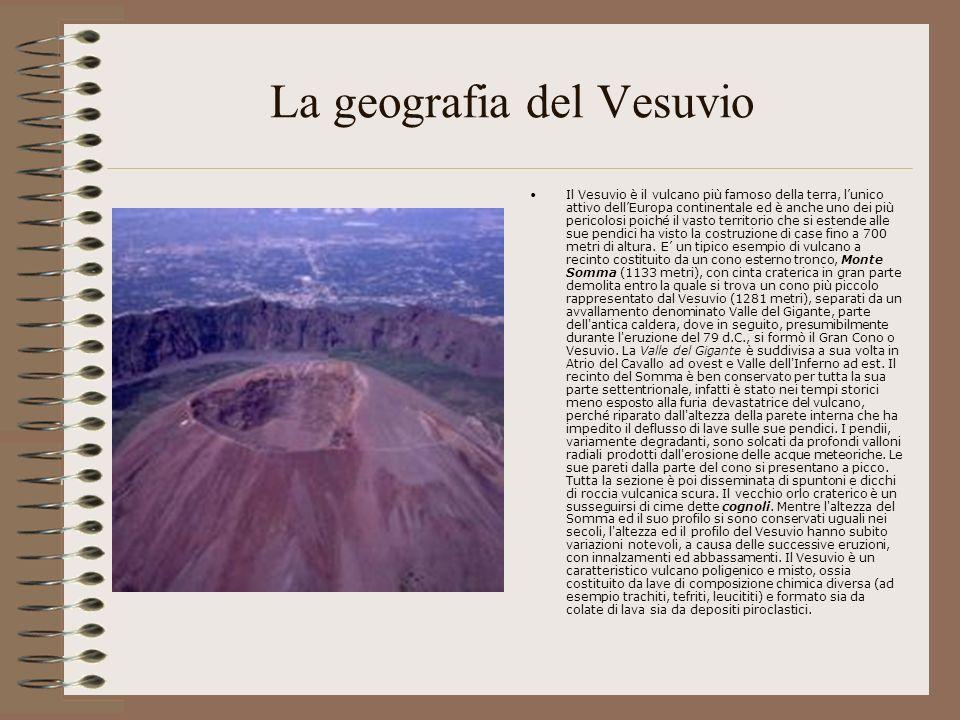 Il Vesuvio è un caratteristico vulcano poligenico e misto, ossia costituito da lave di composizione chimica diversa (ad esempio trachiti, tefriti, leucititi) e formato sia da colate di lava sia da depositi piroclastici.