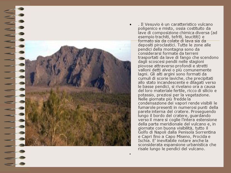 . Il Vesuvio è un caratteristico vulcano poligenico e misto, ossia costituito da lave di composizione chimica diversa (ad esempio trachiti, tefriti, l