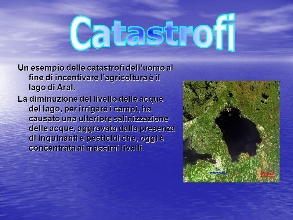 Le acque dolci continentali si suddividono in tre grandi gruppi: - Le acque sotterranee - I fiumi - I laghi