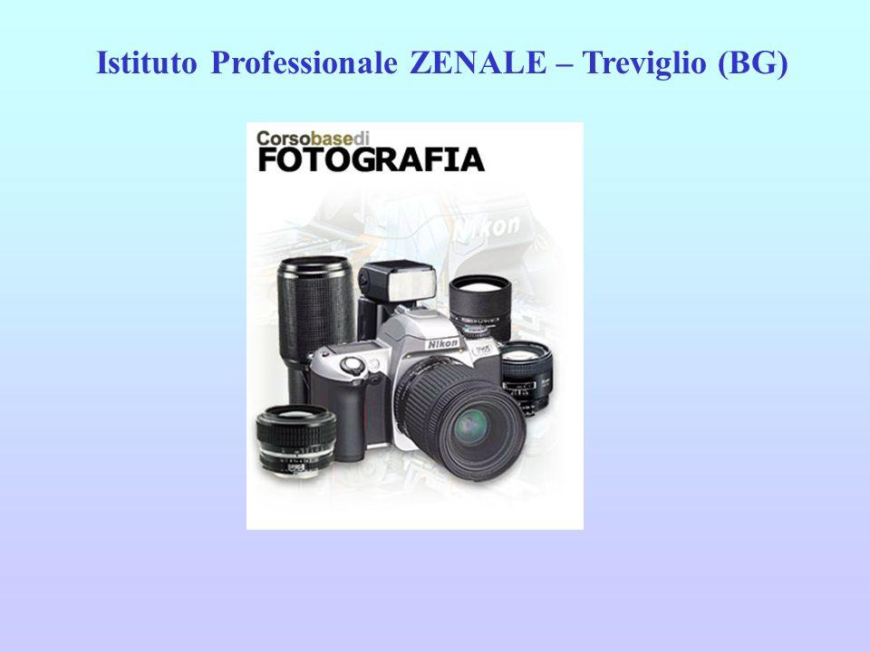 Istituto Professionale ZENALE – Treviglio (BG)