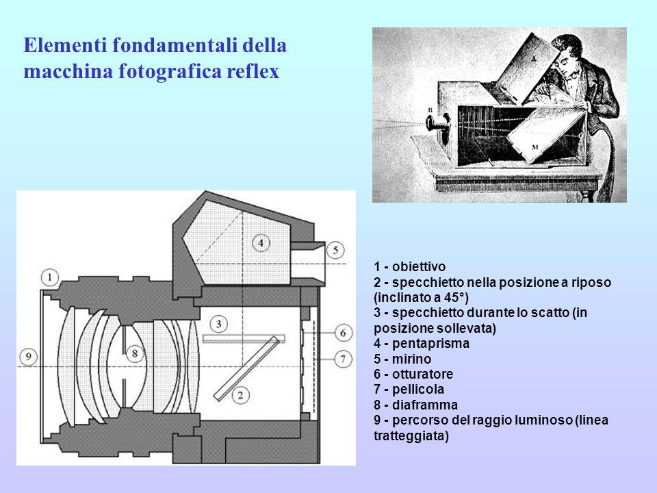 Il diaframma Il diaframma è un dispositivo situato nell obiettivo, costituito da 4, 5 o 6 lamelle che, spostandosi, creano un foro di diametro variabile.