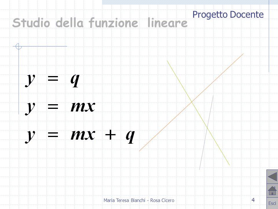 Progetto Docente Esci Maria Teresa Bianchi - Rosa Cicero 5 Retta parallela allasse x y = q Funzione costante D = R C = {q} Punto di intersezione con asse y P (0, q) Derivata nulla
