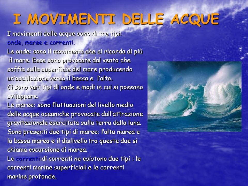 I MOVIMENTI DELLE ACQUE I movimenti delle acque sono di tre tipi: onde, maree e correnti. Le onde: sono il movimento che ci ricorda di più il mare. Es