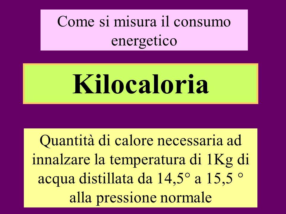 Come si misura il consumo energetico Kilocaloria Quantità di calore necessaria ad innalzare la temperatura di 1Kg di acqua distillata da 14,5° a 15,5