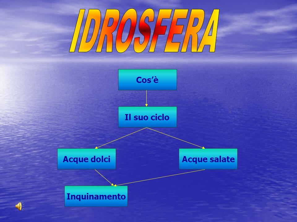 Lidrosfera è linsieme di tutte le acque superficiali, sotterranee e atmosferiche presenti sulla terra