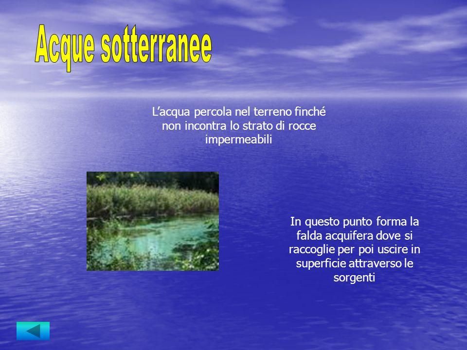 I fiumi sono corsi dacqua perenni alimentati dalle precipitazioni, dalle sorgenti o dallo scioglimento delle nevi Si differenziano per: _ lunghezza _ pendenza _ portata _ regime