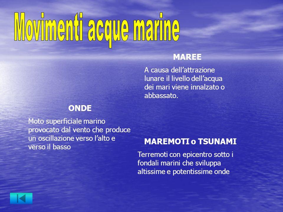 ONDE Moto superficiale marino provocato dal vento che produce un oscillazione verso lalto e verso il basso MAREMOTI o TSUNAMI Terremoti con epicentro