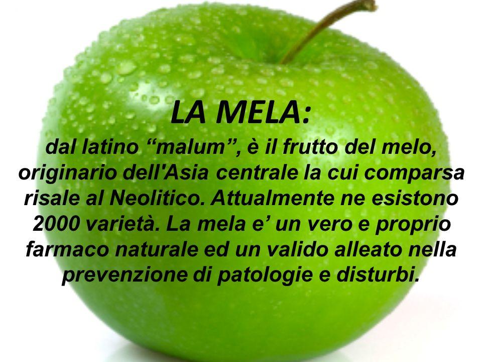 LA MELA: dal latino malum, è il frutto del melo, originario dell'Asia centrale la cui comparsa risale al Neolitico. Attualmente ne esistono 2000 varie