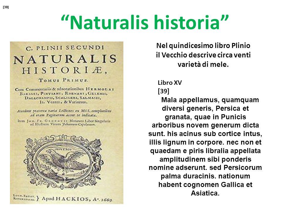 Naturalis historia Nel quindicesimo libro Plinio il Vecchio descrive circa venti varietà di mele. Libro XV [39] Mala appellamus, quamquam diversi gene