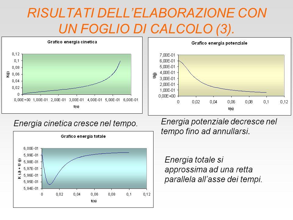 RISULTATI DELLELABORAZIONE CON UN FOGLIO DI CALCOLO (3).