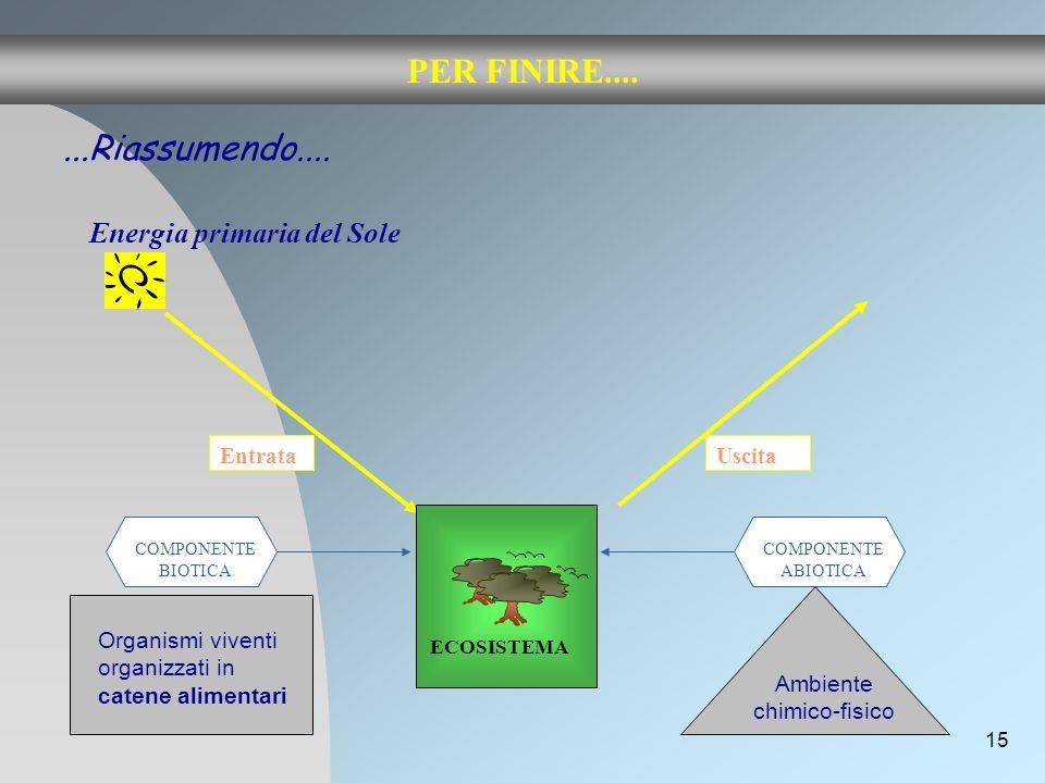 15 PER FINIRE.... Energia primaria del Sole...Riassumendo.... Entrata ECOSISTEMA COMPONENTE BIOTICA COMPONENTE ABIOTICA Ambiente chimico-fisico Organi