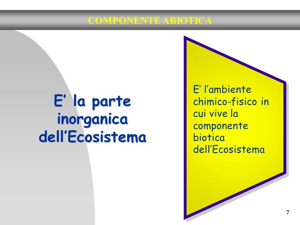 7 COMPONENTE ABIOTICA E la parte inorganica dellEcosistema E lambiente chimico-fisico in cui vive la componente biotica dellEcosistema