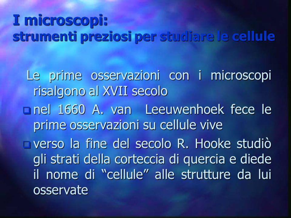 I microscopi: strumenti preziosi per studiare le cellule Le prime osservazioni con i microscopi risalgono al XVII secolo Le prime osservazioni con i m