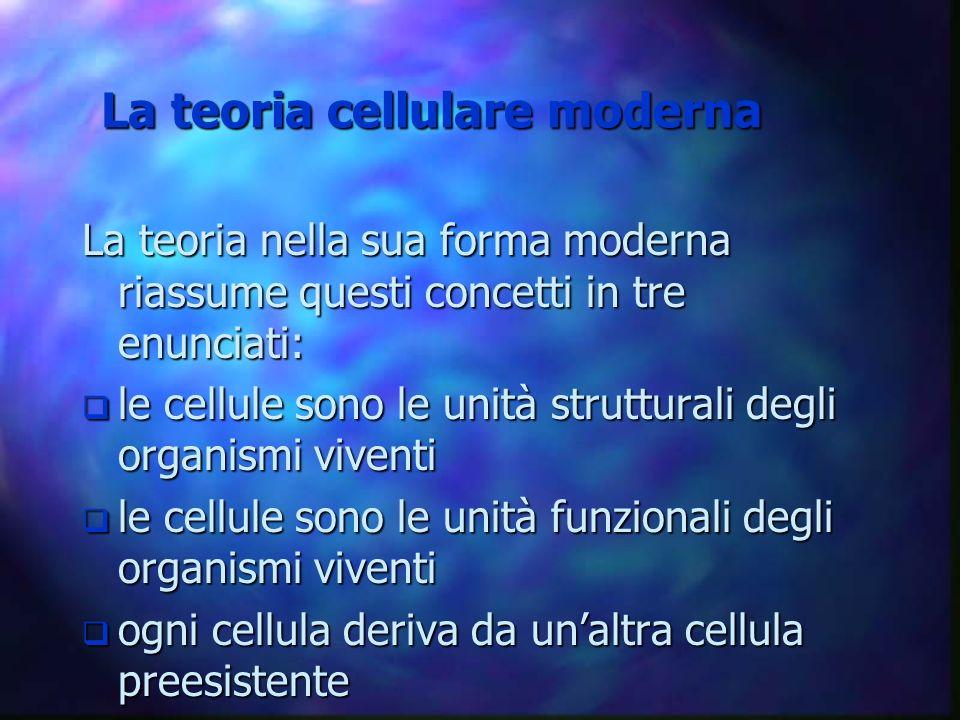 La teoria nella sua forma moderna riassume questi concetti in tre enunciati: q le cellule sono le unità strutturali degli organismi viventi q le cellu