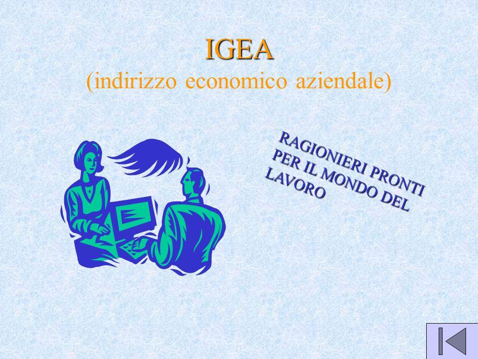 IGEA IGEA (indirizzo economico aziendale) RAGIONIERI PRONTI PER IL MONDO DEL LAVORO