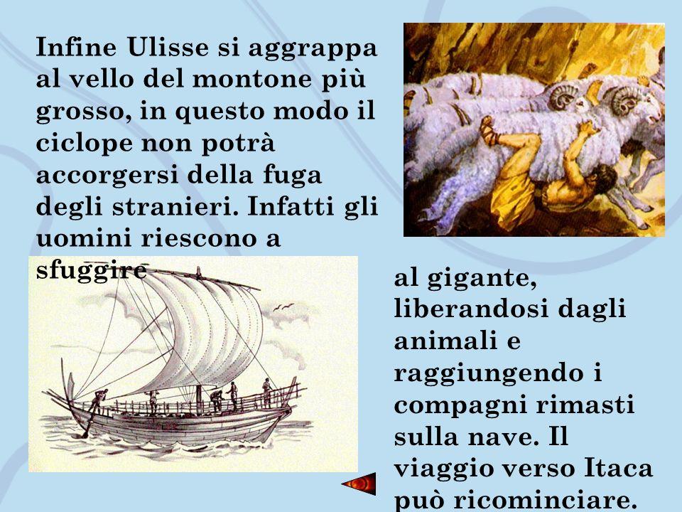 Infine Ulisse si aggrappa al vello del montone più grosso, in questo modo il ciclope non potrà accorgersi della fuga degli stranieri. Infatti gli uomi