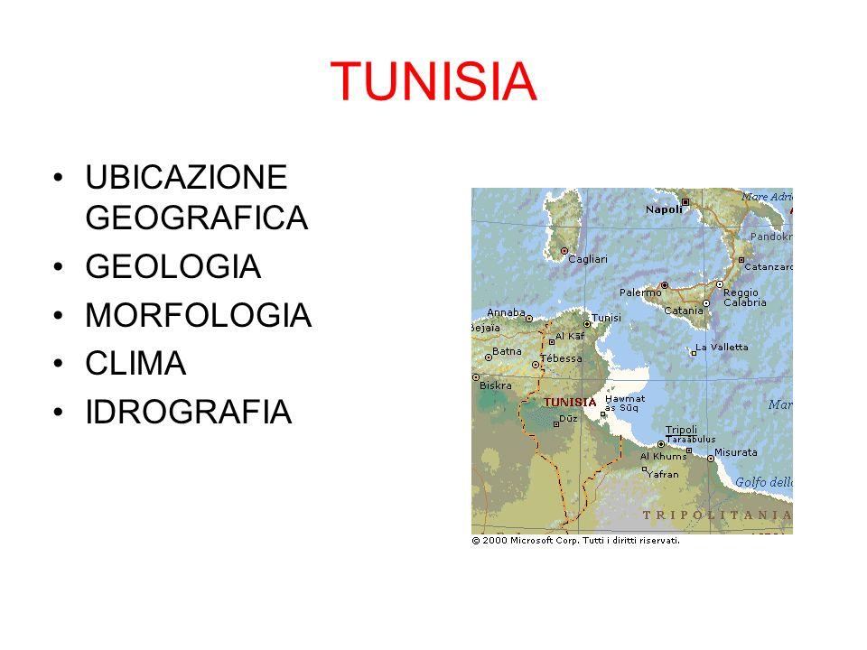 TUNISIA UBICAZIONE GEOGRAFICA GEOLOGIA MORFOLOGIA CLIMA IDROGRAFIA