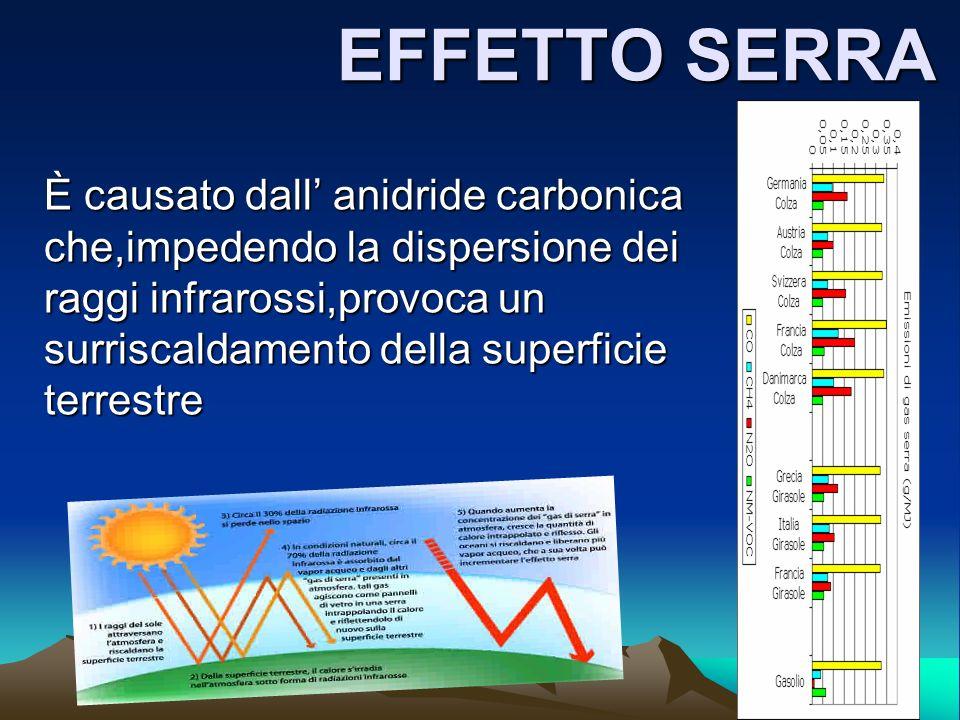 EFFETTO SERRA È causato dall anidride carbonica che,impedendo la dispersione dei raggi infrarossi,provoca un surriscaldamento della superficie terrest