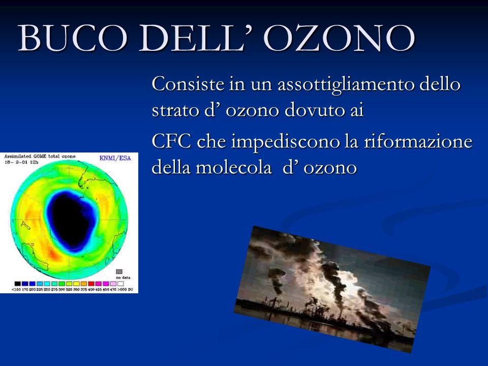 BUCO DELL OZONO Consiste in un assottigliamento dello strato d ozono dovuto ai CFC che impediscono la riformazione della molecola d ozono