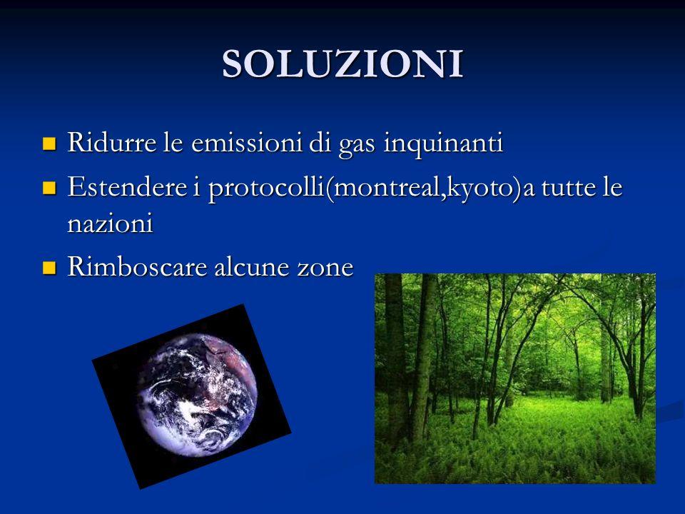 SOLUZIONI Ridurre le emissioni di gas inquinanti Ridurre le emissioni di gas inquinanti Estendere i protocolli(montreal,kyoto)a tutte le nazioni Esten