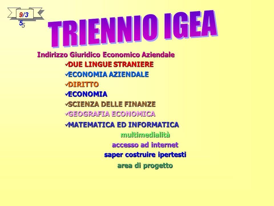 Indirizzo Giuridico Economico Aziendale DUE LINGUE STRANIERE DUE LINGUE STRANIERE ECONOMIA AZIENDALE ECONOMIA AZIENDALE DIRITTO DIRITTO ECONOMIA ECONOMIA SCIENZA DELLE FINANZE SCIENZA DELLE FINANZE GEOGRAFIA ECONOMICA GEOGRAFIA ECONOMICA MATEMATICA ED INFORMATICA MATEMATICA ED INFORMATICAmultimedialità accesso ad internet saper costruire ipertesti area di progetto 9/3 5
