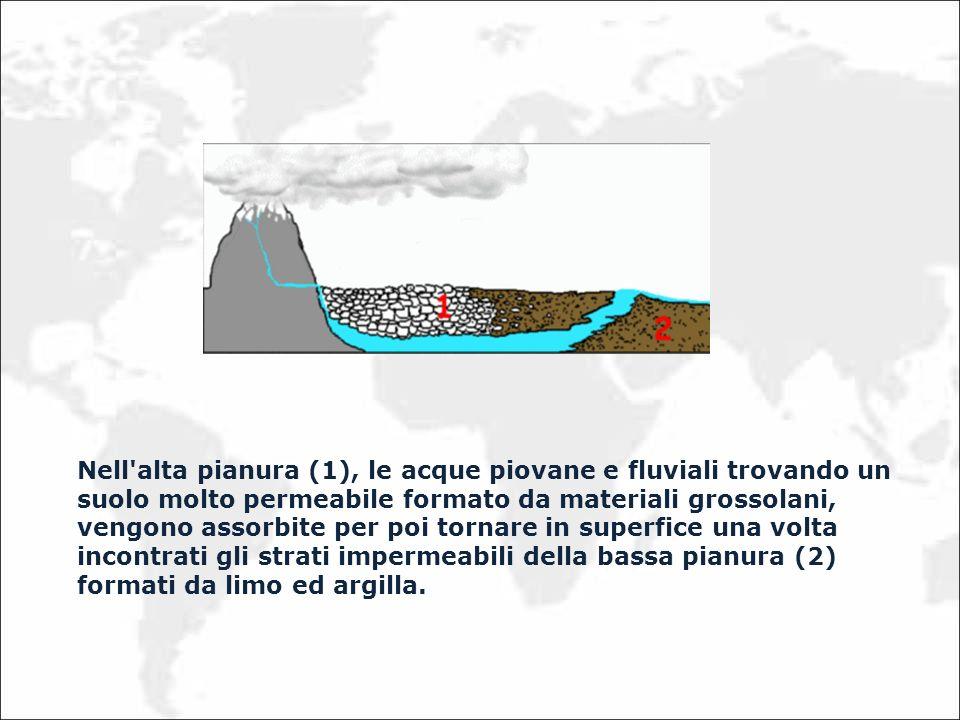 Nell'alta pianura (1), le acque piovane e fluviali trovando un suolo molto permeabile formato da materiali grossolani, vengono assorbite per poi torna