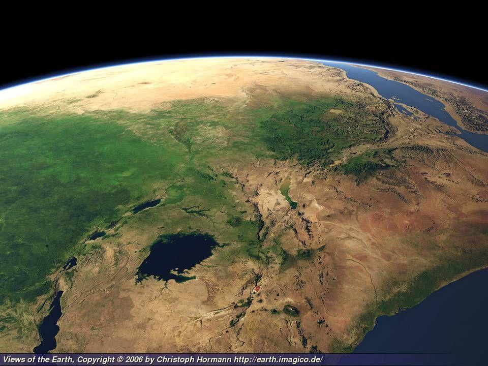 Circa due milioni di anni fa, comparve lHomo habilis.