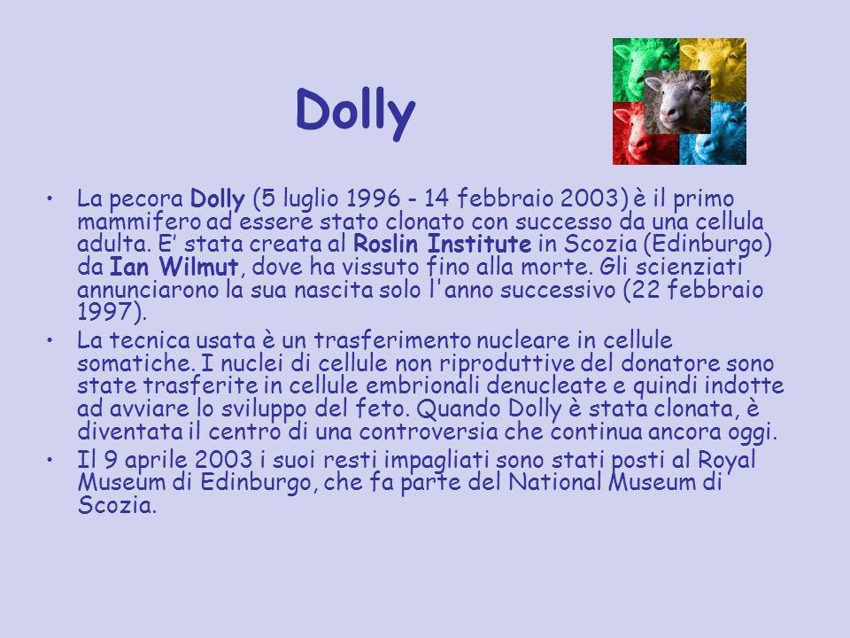 Dolly La pecora Dolly (5 luglio 1996 - 14 febbraio 2003) è il primo mammifero ad essere stato clonato con successo da una cellula adulta. E stata crea