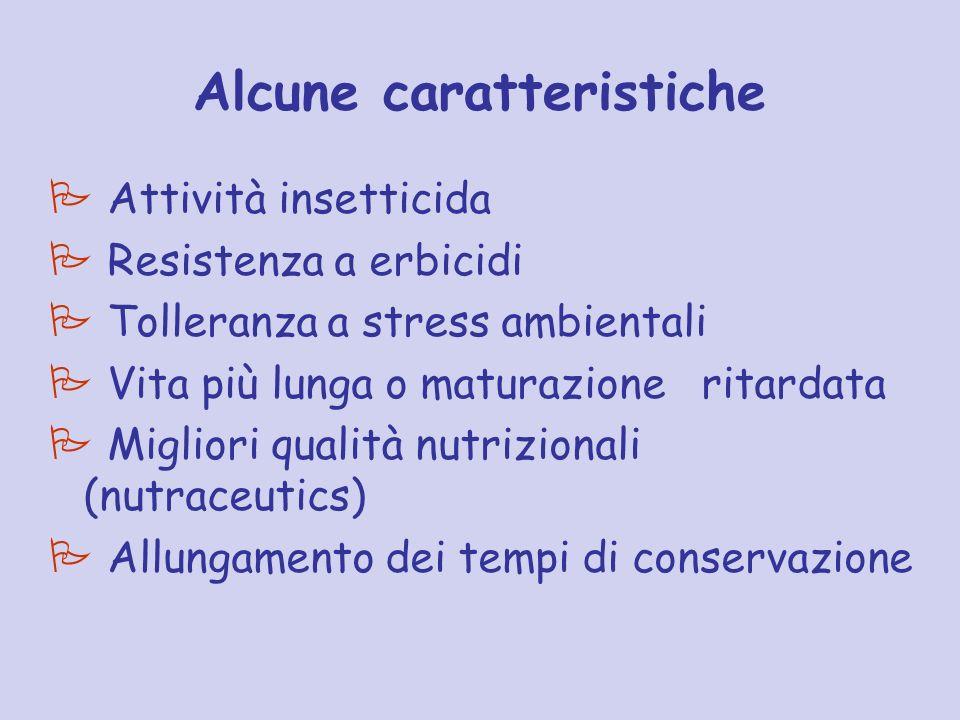 Alcune caratteristiche Attività insetticida Resistenza a erbicidi Tolleranza a stress ambientali Vita più lunga o maturazione ritardata Migliori quali