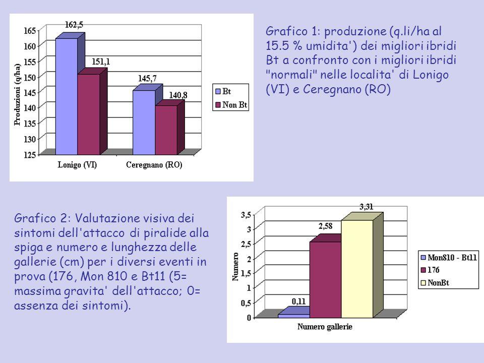 Grafico 1: produzione (q.li/ha al 15.5 % umidita') dei migliori ibridi Bt a confronto con i migliori ibridi
