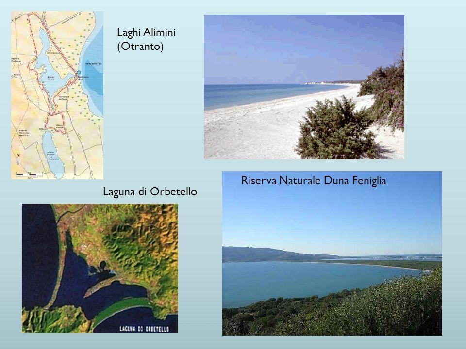 Laghi Alimini (Otranto) Riserva Naturale Duna Feniglia Laguna di Orbetello