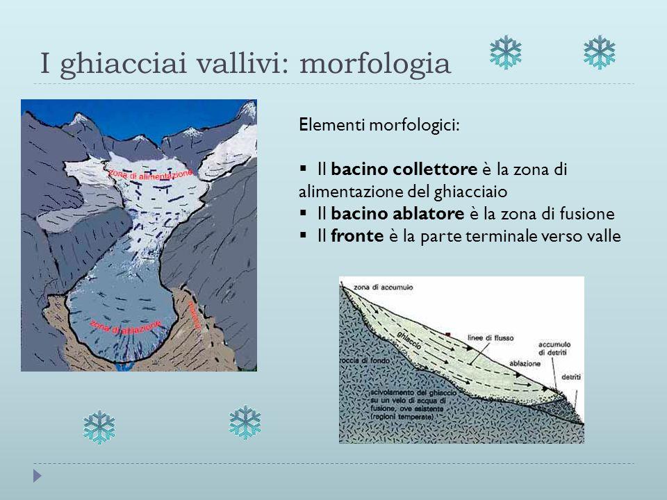 I ghiacciai vallivi: morfologia Elementi morfologici: Il bacino collettore è la zona di alimentazione del ghiacciaio Il bacino ablatore è la zona di f