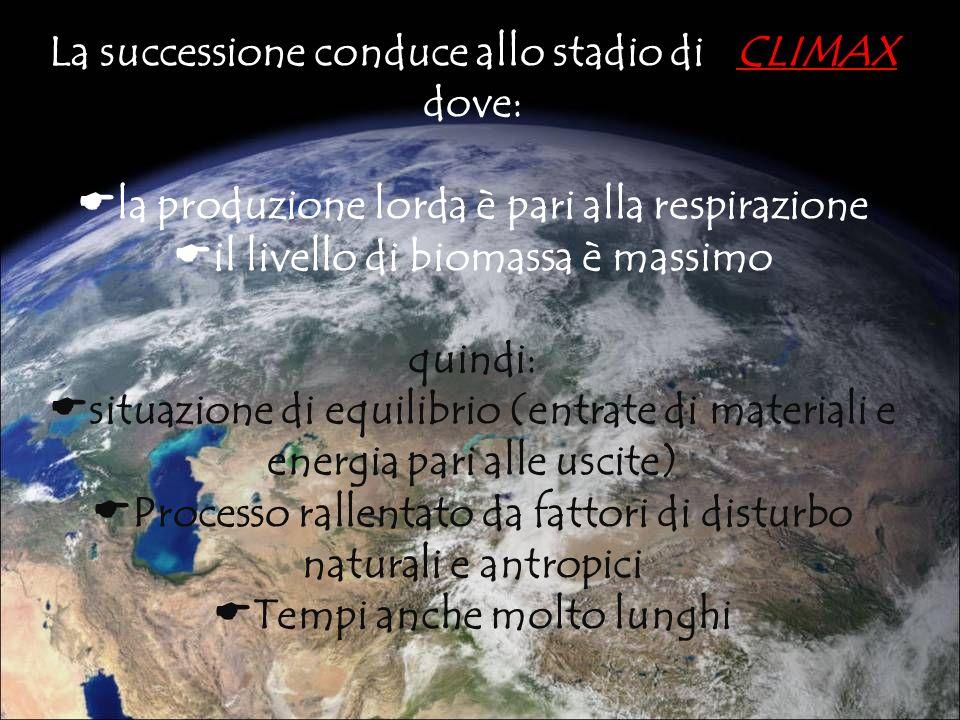 La successione conduce allo stadio di CLIMAX dove: la produzione lorda è pari alla respirazione il livello di biomassa è massimo quindi: situazione di
