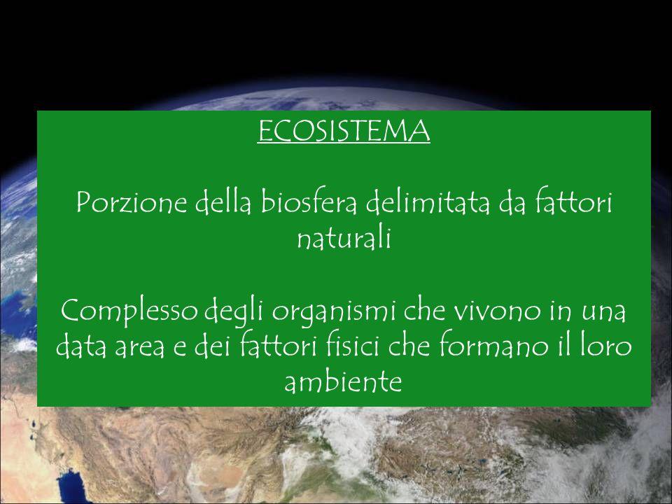 ECOSISTEMA Porzione della biosfera delimitata da fattori naturali Complesso degli organismi che vivono in una data area e dei fattori fisici che forma
