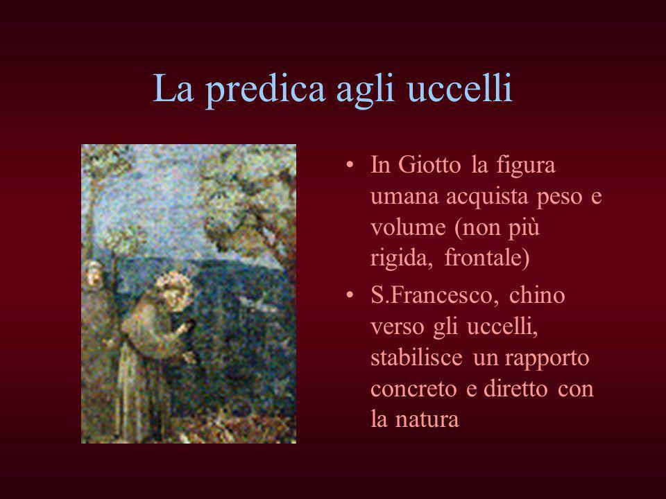 La predica agli uccelli In Giotto la figura umana acquista peso e volume (non più rigida, frontale) S.Francesco, chino verso gli uccelli, stabilisce u