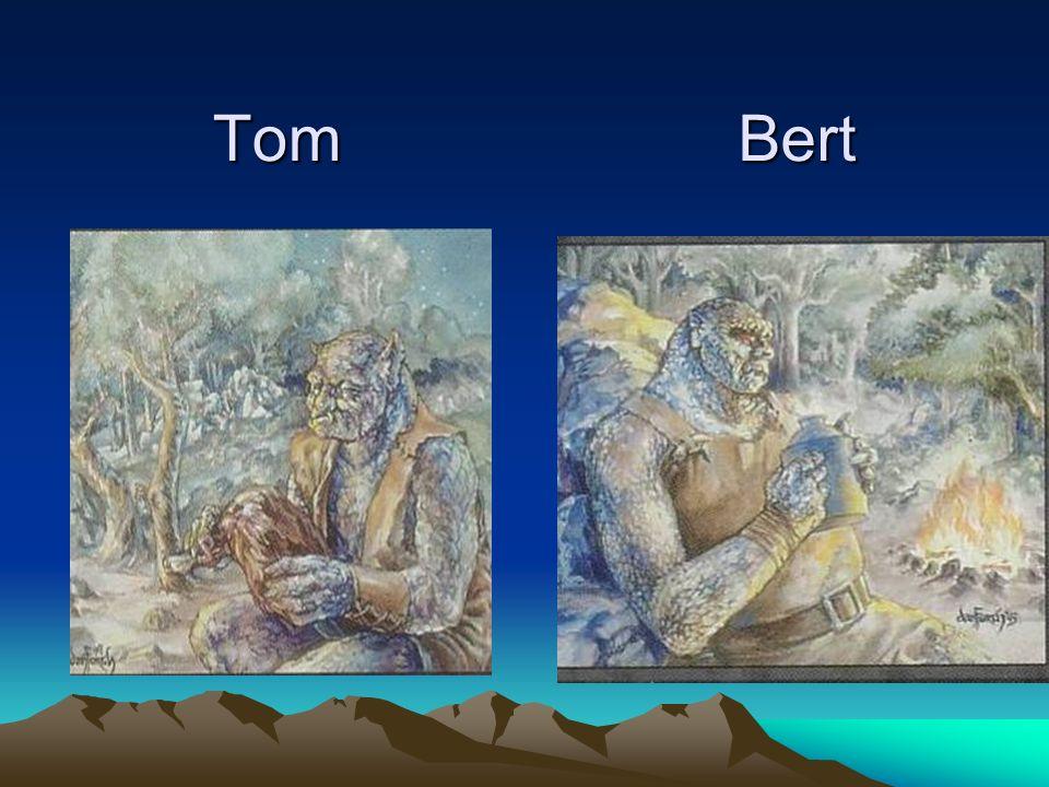 TomBert