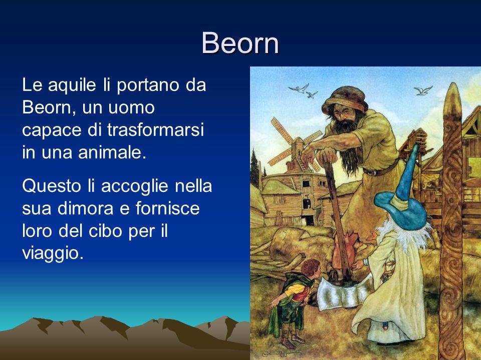 Beorn Le aquile li portano da Beorn, un uomo capace di trasformarsi in una animale.