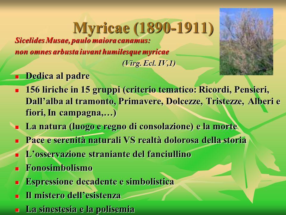 Myricae (1890-1911) Sicelides Musae, paulo maiora canamus: non omnes arbusta iuvant humilesque myricae (Virg. Ecl. IV,1) Dedica al padre Dedica al pad