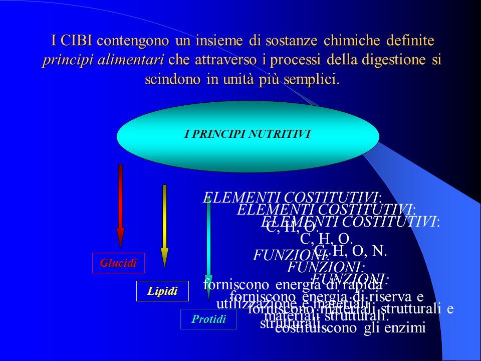 I CIBI contengono un insieme di sostanze chimiche definite principi alimentari che attraverso i processi della digestione si scindono in unità più sem
