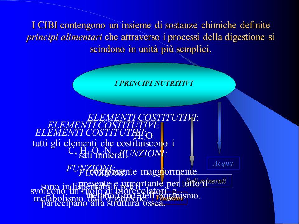 I PRINCIPI NUTRITIVI Vitamine Sali minerali Acqua ELEMENTI COSTITUTIVI: C, H, O, N. FUNZIONI: sono indispensabili per il metabolismo dellorganismo. EL