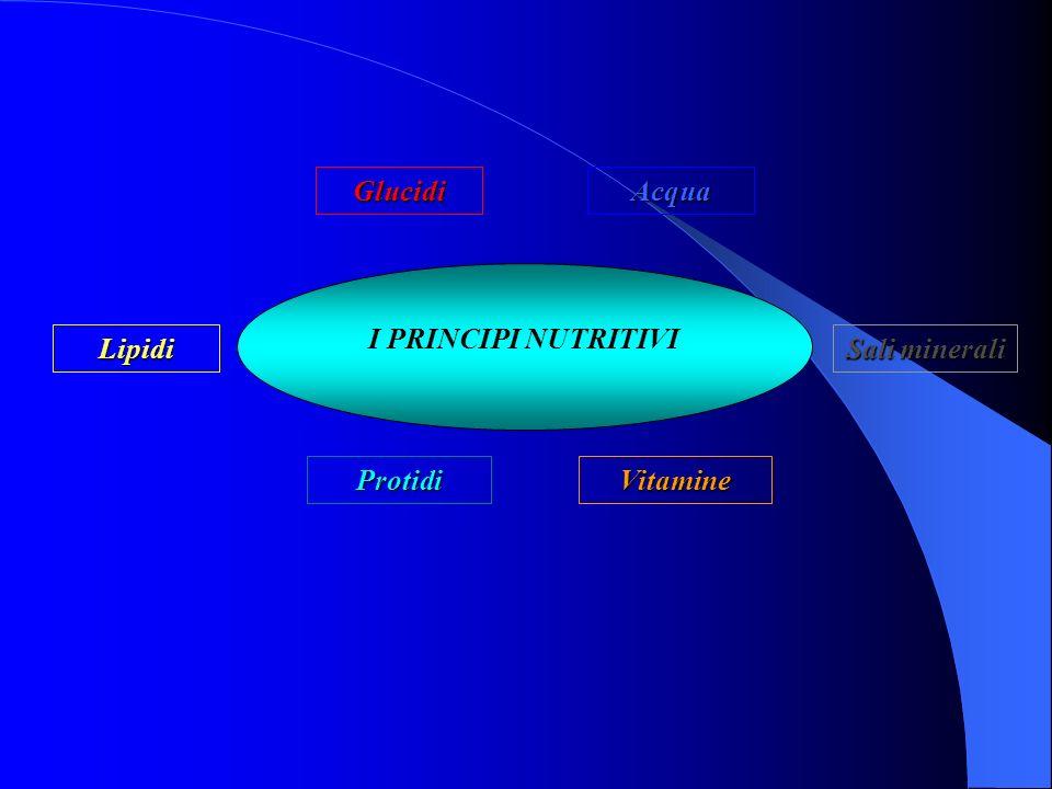 I PRINCIPI NUTRITIVI Glucidi Lipidi ProtidiVitamine Sali minerali Acqua