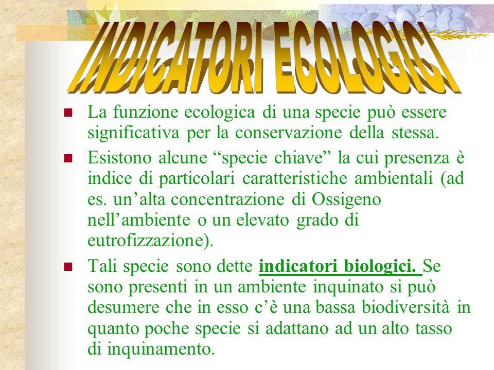 La funzione ecologica di una specie può essere significativa per la conservazione della stessa.
