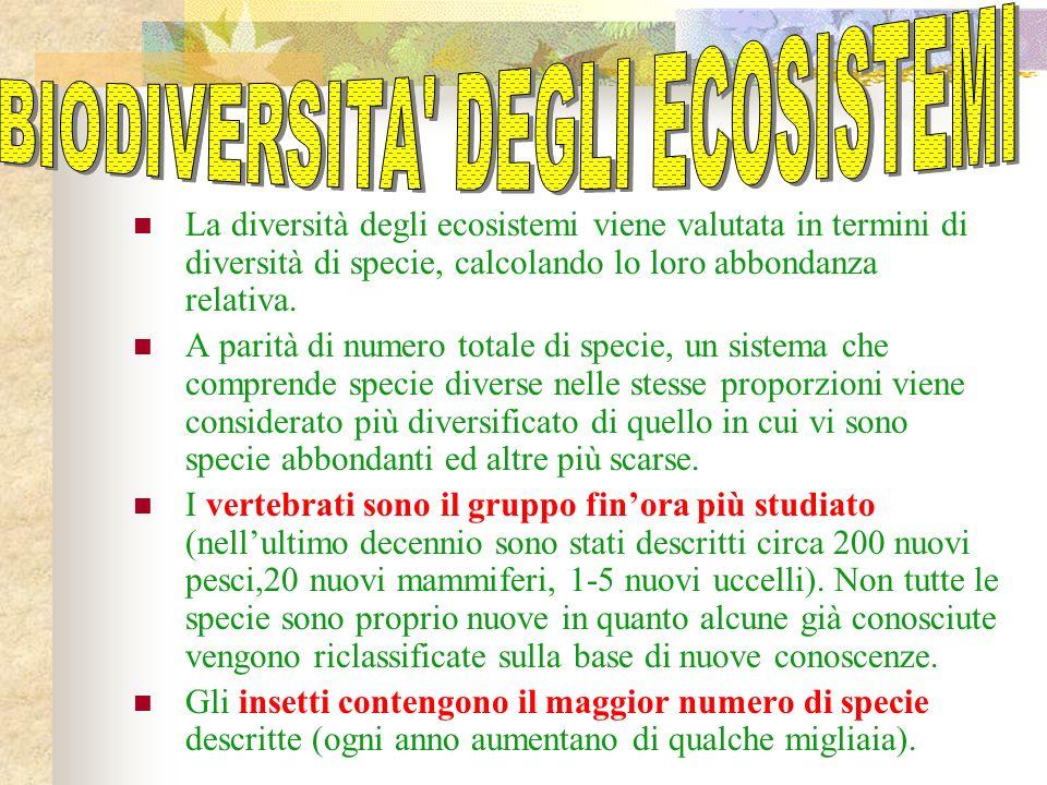 La diversità degli ecosistemi viene valutata in termini di diversità di specie, calcolando lo loro abbondanza relativa.