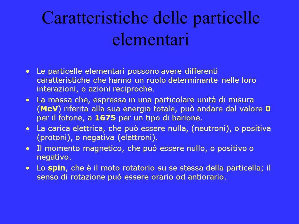 Caratteristiche delle particelle elementari Le particelle elementari possono avere differenti caratteristiche che hanno un ruolo determinante nelle lo