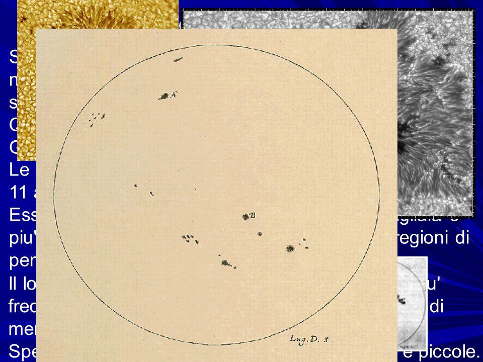 Le macchie solari Sulla fotosfera si distinguono anche regioni oscure, di numero, forma e dimensioni variabili, dette macchie solari.