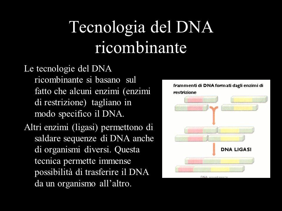 Tappe dello studio del genoma umano 1869 Miescher isola la nucleina, cioè il DNA allora sconosciuto 1953 Watson e Crick scoprono la struttura del DNA