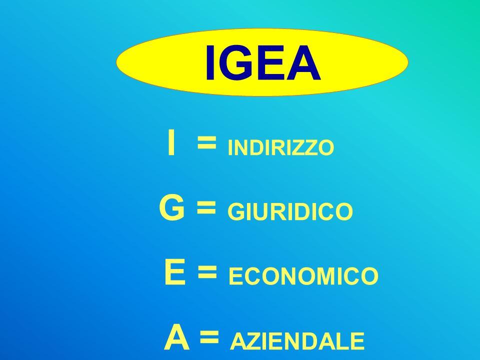 IGEA I = INDIRIZZO G = GIURIDICO E = ECONOMICO A = AZIENDALE
